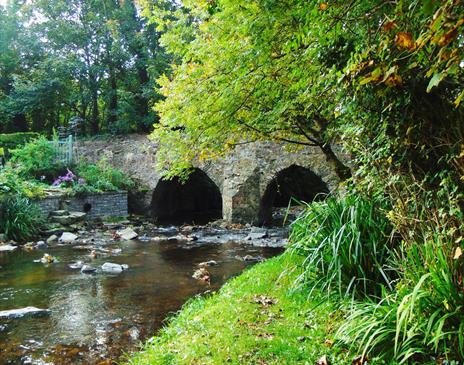 Silverdale Glen