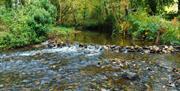 Silverdale Glen River