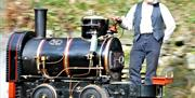 Ride on the replica mine railway. A popular activity for all the family. Saturdays only.