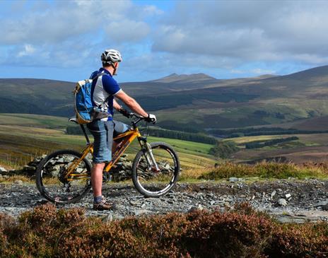 Biker admiring the breathtaking scenery