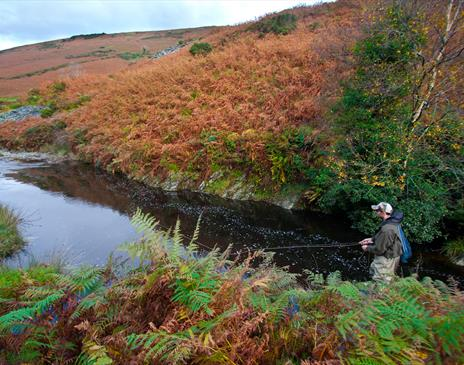 Fishing an upland stretch of the Sulby River