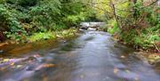 The Silver Burn River