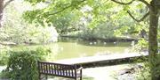 Tynwald Arboretum