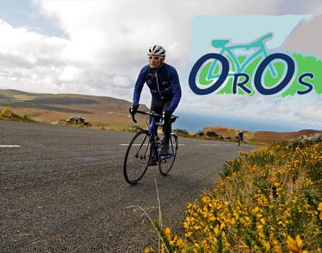 Open Roads, Open Skies
