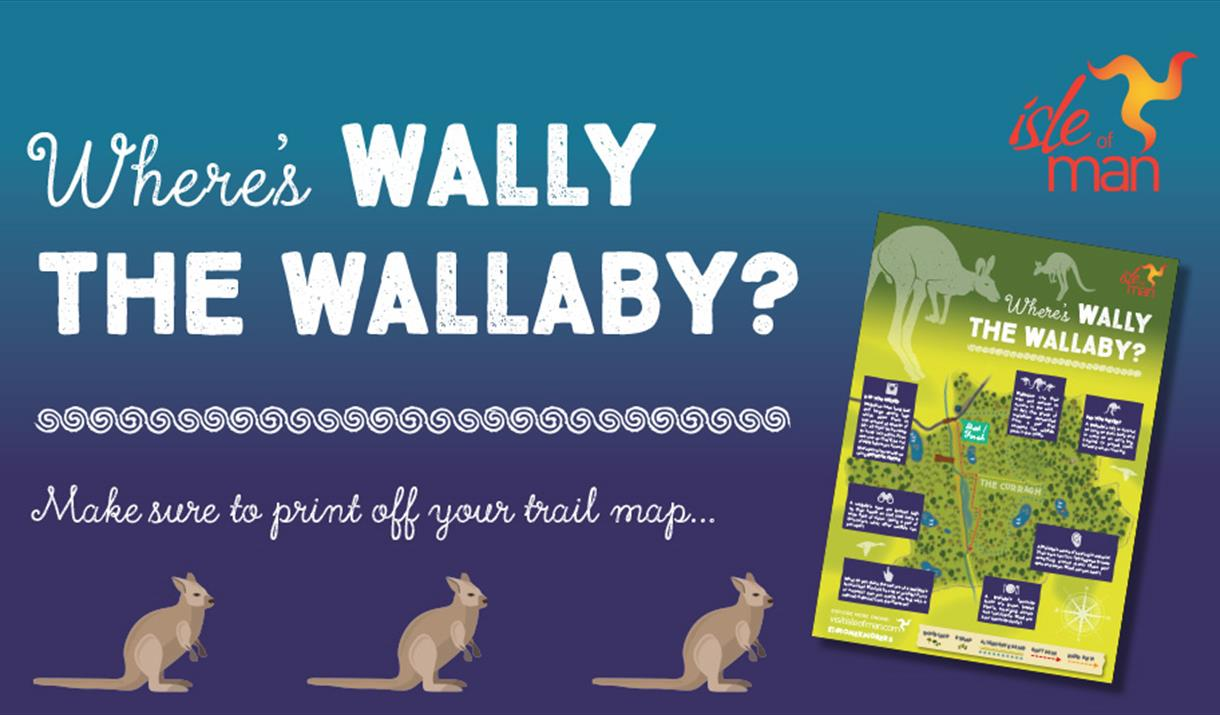 Where's Wally the Wallaby?