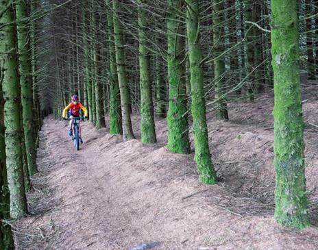 South Barrule Mountain Bike Trails
