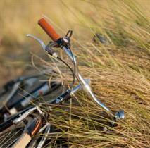 Explore Victoria's Island by bicycle