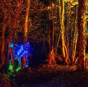 Light up costume in the lit up woods at Robin Hill