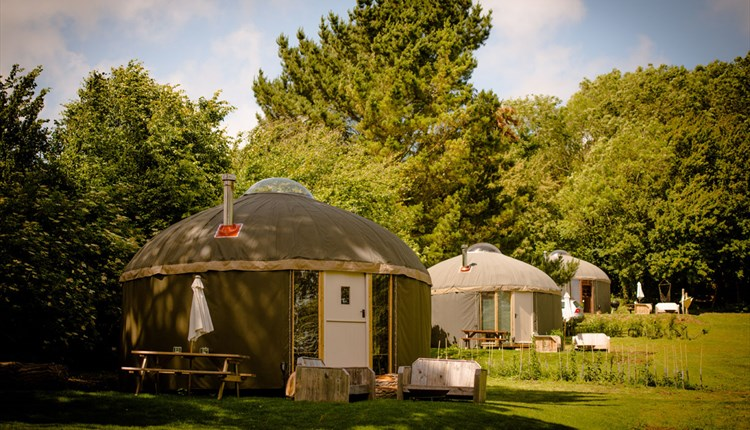 Outside view of yurts at The Garlic Farm, Isle of Wight