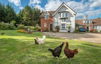Grange Farm B&B & Self Catering - bed and breakfast and self catering, Isle of Wight