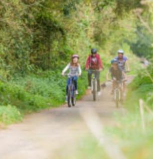 Isle of Wight, Things to Do, Events, Isle of Wight Steam Railway, Walk the Line, Image of cyclists on old railway line path