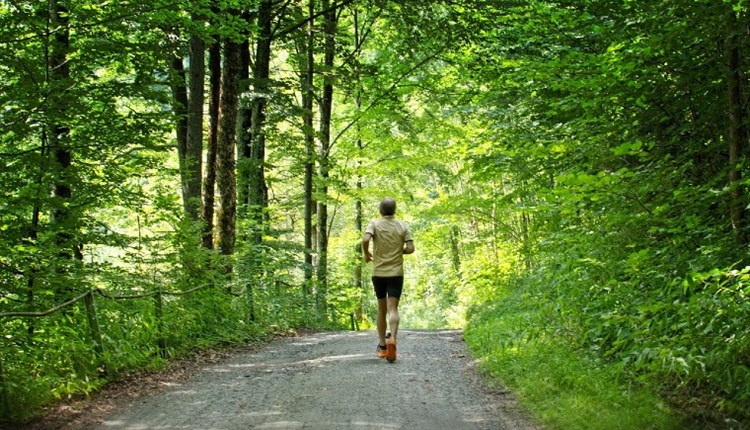 Isle of Wight, Things to Do, Isle of Wight Steam Railway, Race the Train Event, Image of man running/jogging along forest/woodland path