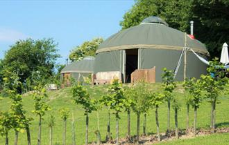Glamping Self Catering Isle of Wight - Luxury Yurts on The Garlic Farm