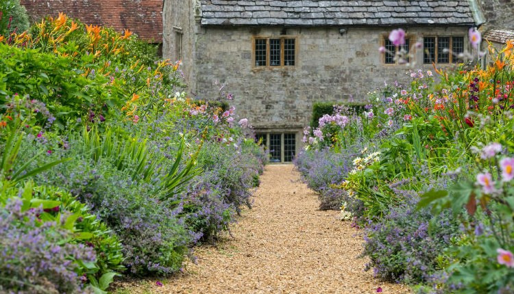 Isle of Wight, Things to Do, Mottistone Gardens, What's On