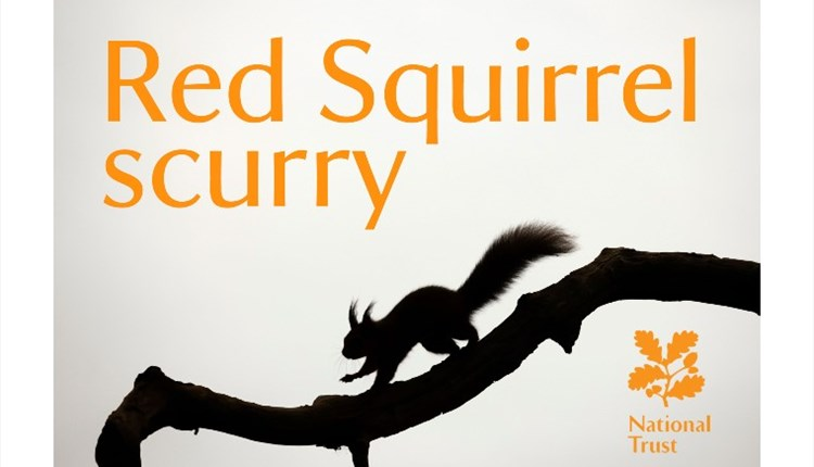 Isle of Wight, Things to Do, Events, National Trust, Mottistone Gardens, Red Squirrel Scurry