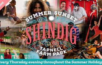 Summer Sunset Shindigs at Tapnell Farm Park, Yarmouth, What's on, Isle of Wight