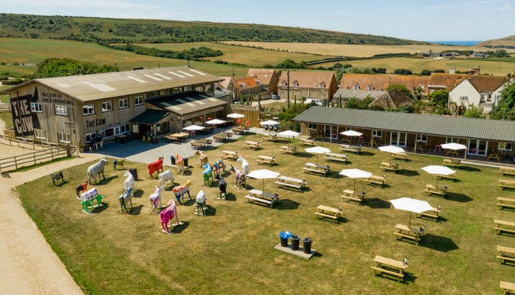 Aerial view of The Cow Restaurant at Tapnell Farm Park, Food & Drink, Isle of Wight