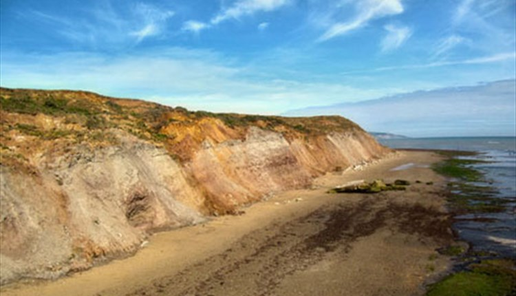 Brook Beach