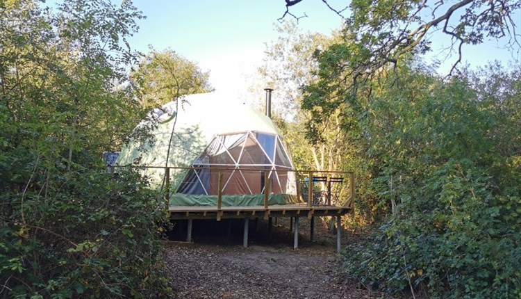 Isle of Wight, Camp Wight, Accommodation, Glamping Dome in woodland setting