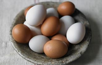 Image of free range brown and white eggs, Hazelgrove Farm Egg, Ashey, Ryde, Isle of Wight