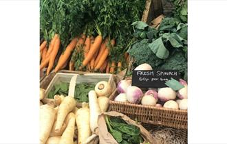 Variety of fresh local produced vegetables in baskets at Farmer Jack's Farm Shop, Arreton, local produce, let's buy local