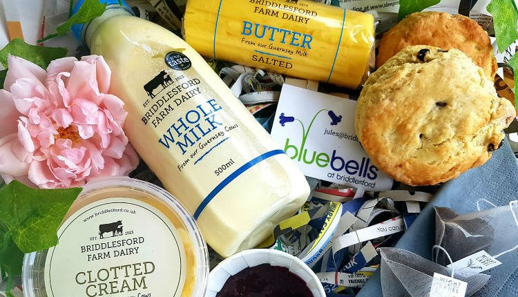 Scone, clotted cream, milk and butter at Briddlesford Lodge Farm, farm shop, local produce, Isle of Wight, let's buy local