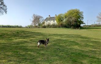 Outside grounds at Somerton Farm Holiday Cottage, self-catering, Cowes