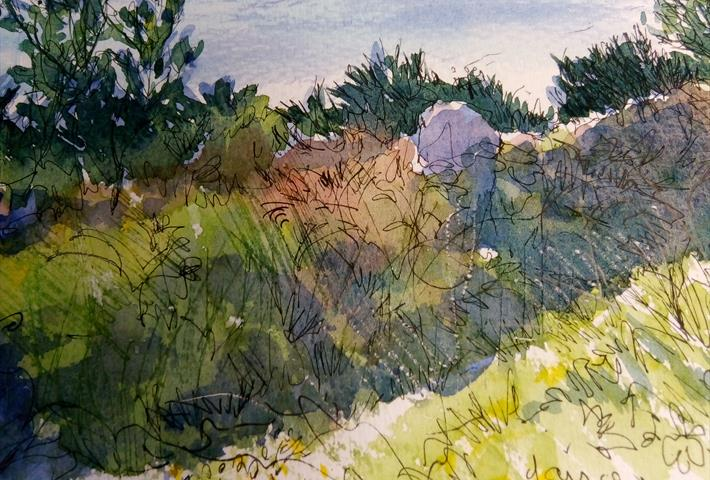 Sketching Walk with Sue Lewington