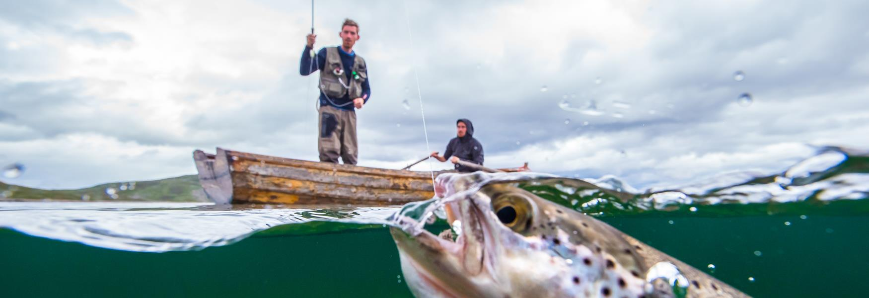 Fishing, boat, man fishing, trout