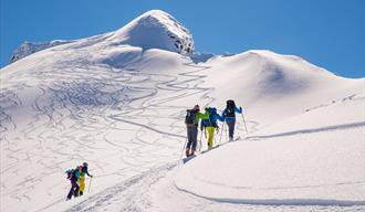 Bilete frå topptur, skiløparar på veg oppover mot toppen, spor etter mange nedkøyringar i bakgrunnen.