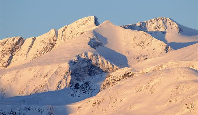 Mange av dei høgaste toppane i Aust-Jotunheimen er synlege - og tilgjengelege frå Nasjonal turistveg Valdresflye. Dette er 2368 meter høge Surtningssue.