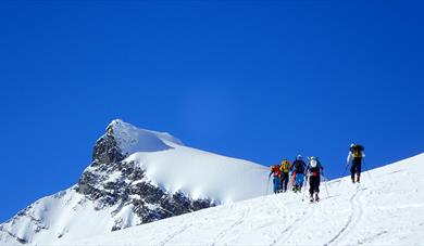 Ski mountaineering Storebjørn Jotunheimen