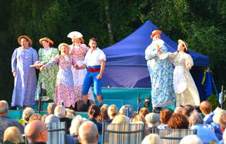 Cast during a performance