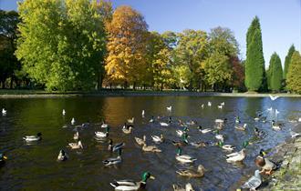 Thompson Park Burnley