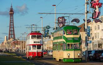 Heritage Trams