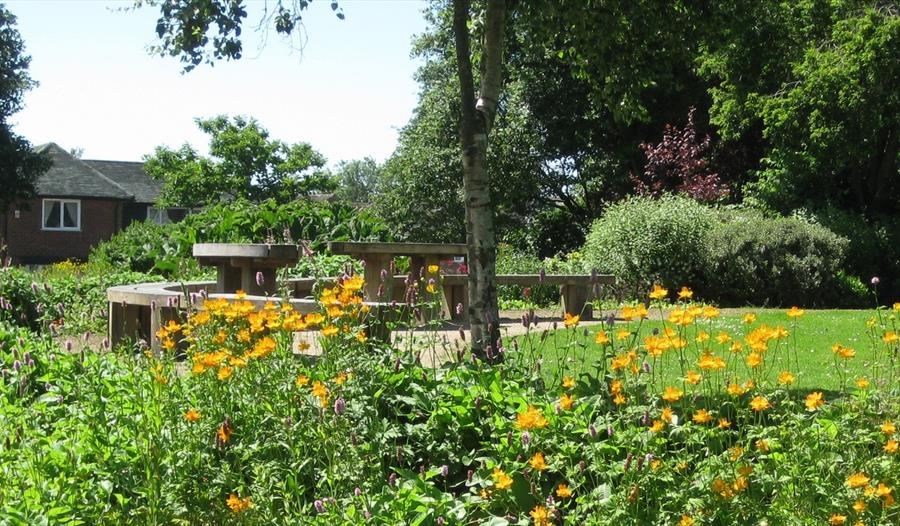 Jean Stansfield Park with benches and yellow flowers