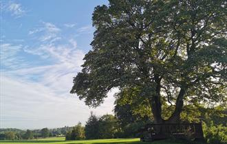 The Estate Grounds at Stirk House Hotel