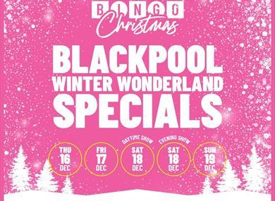 Bongo's Bingo Winter Wonderland