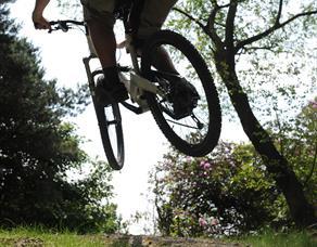 Billinge Wood Mountain Bike Trails