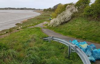 Big Estuary Clean