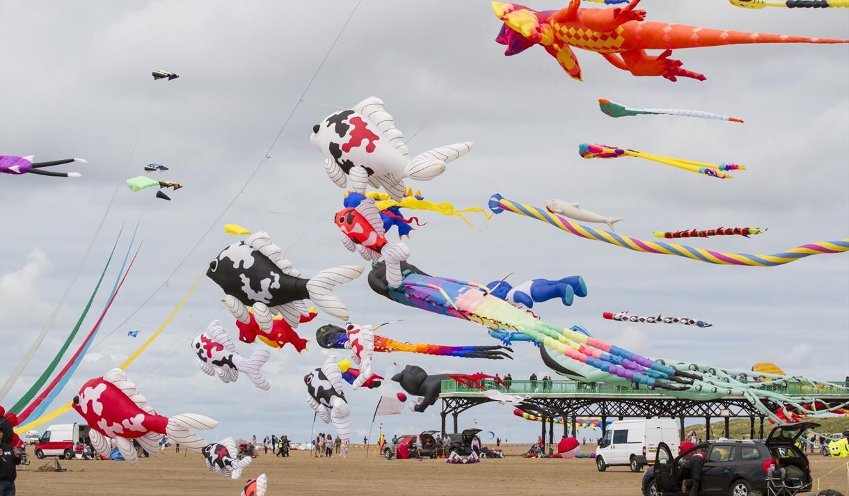 Kite Festival displays