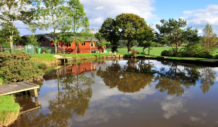 Claylands Park