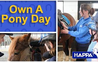 Own A Pony Day