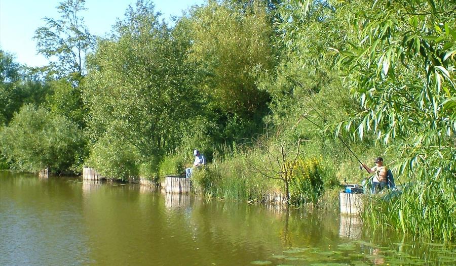 Platts Lane Lake