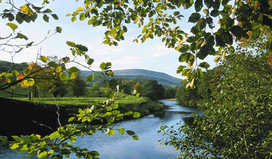 Ribble Catchment Conservation Trust