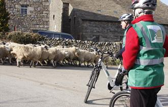 Cycling along the Bowland lanes