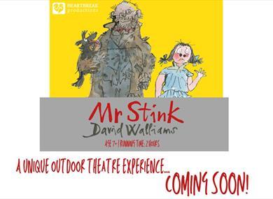 Mr Stink Poster