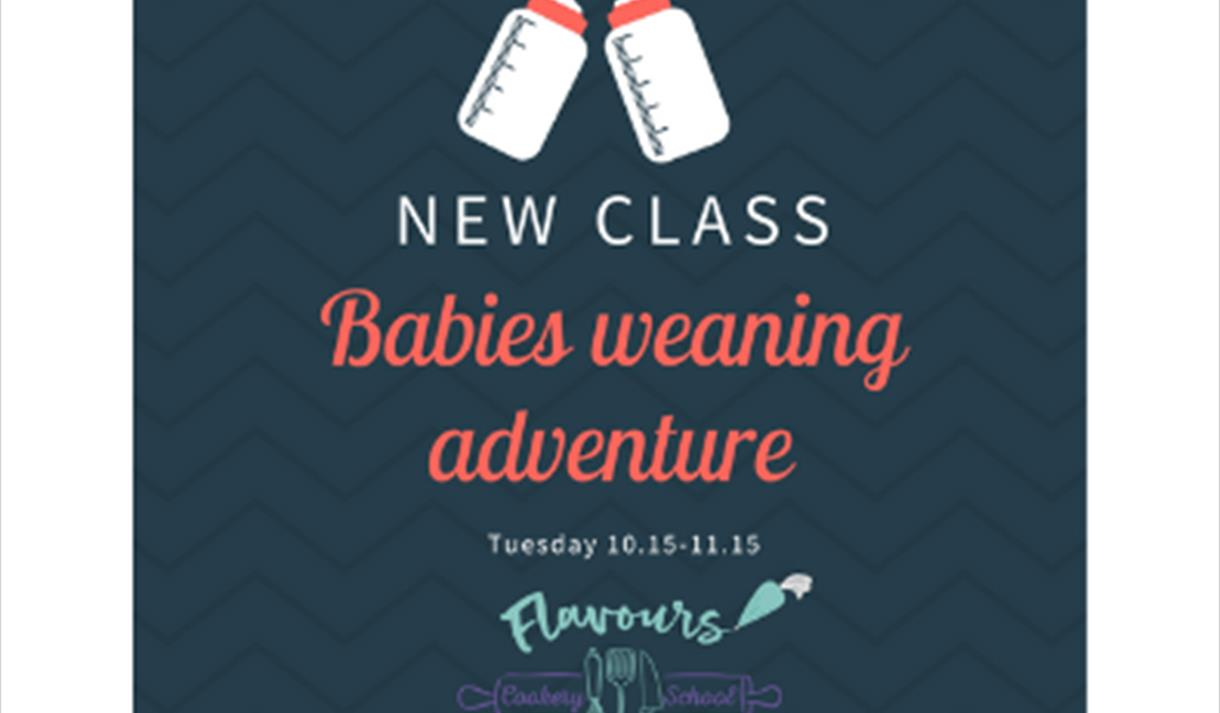 Baby Weaning adventure class