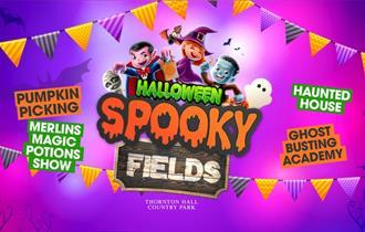 Spooky Fields