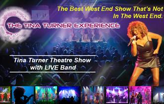 Tina Turner experience promotional poster